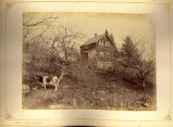 [Cow in front of small wooden house]
