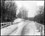 [Belair Road in Gunpowder Falls State Park]