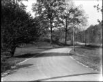 [Road in Gwynns Falls Park, Baltimore, Maryland]