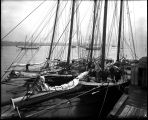 [Oyster fleet off Fells Point, Baltimore]