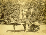 [Man driving horse drawn lawn roller]