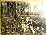 [Workers in cotton field]